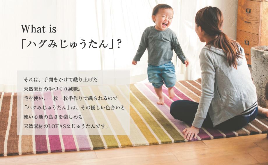 hagumi-exhibition-03